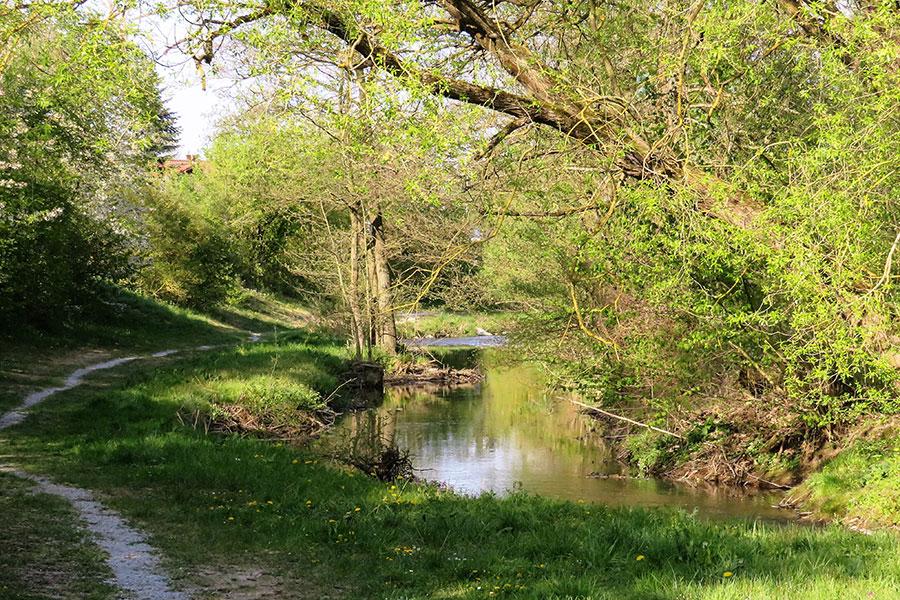 Umgebung und Lage von Landgasthof Goldenes Rad